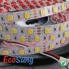 5052二重カラーWWWの屈曲LEDロープ