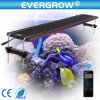 Evergrow regulable automática LED de luz de Acuario de 120cm.
