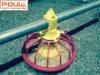 Griglia e piccolo sistema di innalzamento della pavimentazione del pollo per la pollicultura