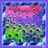 Красивые цифровой печати шелковые шарфы (F13-0028)