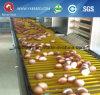 H Systeem van de Kooi van de Laag van het Ei van het Gevogelte van de Kip van de Verwijdering van de Mest van het Type het Automatische