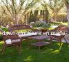 Напольная обедая мебель (CEN-10163)