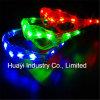 Blinkende Sonnenbrillen des Armkreuz-Web-LED