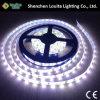 2835 고품질 산출 LED 지구 120LEDs/Meter