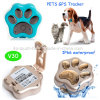 Perseguidor impermeable del GPS del animal doméstico con WiFi Anti-Perdido y la alarma V30 de la Geo-Cerca