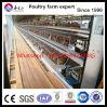 Cages de couche de Galvznized de matériel de ferme avicole