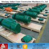 Élévateur électrique choisi par vitesse de câble métallique de qualité
