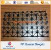 De Glasvezel Plastic Tweeassige Geogrid van het Huisdier van de polyester