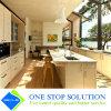 Neue konkurrenzfähiger Preis-Küche-Schrank-Möbel (ZY 1058)