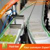 O melhor transporte de correia modular recomendado do produto comestível com alta qualidade