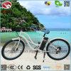 뚱뚱한 타이어 LCD 디스플레이를 가진 전기 여자 바닷가 함 자전거