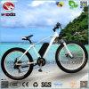 Triciclo elettrico della spiaggia della bici della bicicletta del motorino grasso poco costoso della gomma