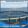 Piscicultura Piscicultura Gaca líquida, rede de pesca