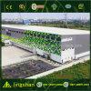 Edificio prefabricado/taller/fábrica de la estructura de acero del diseño profesional