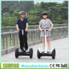 New Style Sport Electric Kick Scooters with CE (ESIII)
