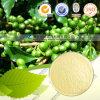 Uittreksel van de Boon van de Koffie van de Kwaliteit van Hight het Zuivere Natuurlijke Groene