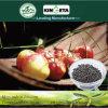 Il carbonio di conservazione di acqua di Kingeta ha basato il fertilizzante microbico composto