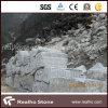 Chiness大理石のNatualの美の風景画の大理石