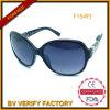 يتاجر تأمين نظّارات شمس بلاستيكيّة مع زخرفة في هيكل ([ف15493])