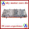 Мотор Stator и Rotor Transfer Die