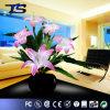 Kunstbloemen die uit Licht van de Bloem van de Vezel van China het Optische worden ingevoerd