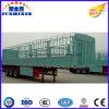 Heiße Verkauf Tri-Wellen 60 Tonnen Zaun-Stange-Viehbestand-Tiertransport-Dienstladung-Schlussteil-zu angemessenem Preis