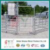 Сверхмощный австралийский строб панели лошади загородки фермы строба фермы
