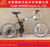 Bicicleta de dobramento do Gainer 20 de Tianjin  com projeto da bicicleta de MTB