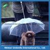 Elementi liberi trasparenti aperti di immaginazione dell'ombrello della pioggia diplomati regalo del cane di animale domestico del PVC dell'automobile diritta di promozione