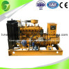 Grande descrizione di prodotto del gruppo elettrogeno del gas naturale di potere dello standard internazionale