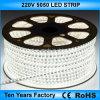Striscia impermeabile 220V dell'indicatore luminoso di migliori prezzi SMD 5050 LED