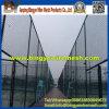 PVC Coated Chain Link Fence (다이아몬드 철망사)