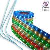 Striscia flessibile impermeabile di RGB 12V SMD3528 LED