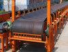 Convoyeur à bande fixe utilisé industriel du décollement II