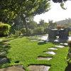 庭のための3つのカラー耐久の美化の草