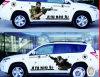 Haltbare Qualitätsauto-Rumpf-Aufkleber-Abbildung
