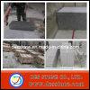Granito chino del azulejo de la losa del granito para el azulejo/la encimera/la pared/el suelo de la cocina