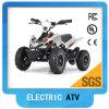 500W Kids ATV Quad Bike Electric Mini ATV для Kids с CE