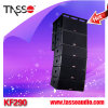 Professional Theater Line Array Audio System