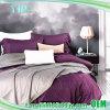 De kleurrijke Vriendschappelijke LuxeReeksen van het Linnen van het Bed van het Hotel Eco