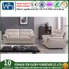 Sofá de couro moderno para a mobília da sala de visitas (TG-S209)