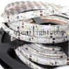 Striscia flessibile competitiva superiore di prezzi IP68 0.2W 2835 SMD LED di luminosità eccellente