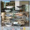Granite coloré Stone Wash Basin pour Bathroom ou salle de toilette