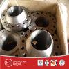 ANSI B16.5/DIN En1092-1/GOST12821/Jisb2220/Mss Sp-44 Pipeline Flange