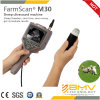 Vendre Farmscan M30 Hot Grands animaux B Mode Ultrasound Scanner avec le prix bas