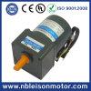 220V 25W High Toruqe Low RPM Electric Motors