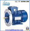 motor de inducción trifásico 15kw con el Ce, surtidor del OEM del certificado del CCC