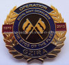 Os &Brass personalizados do chapeamento de ouro morrem Pin golpeado do Lapel (MJ-PIN-108)