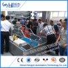 Производство оборудования для подъема оборудования Farrowing свиней отсек для продажи