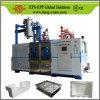 Fangyuan progetta la macchina per l'imballaggio delle merci per il cliente della schiuma di stirolo di ENV